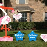 Pink Stork with Sibling Signs