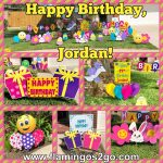 pink yellow purple birthday decorations