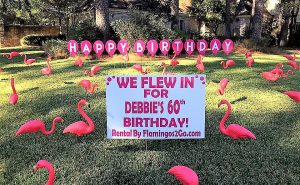 birthday flamingos