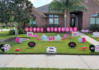 40 & Fabulous Flamingos